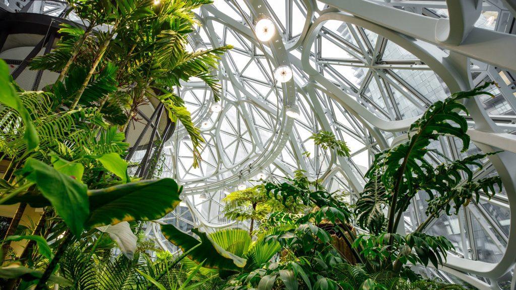 Projekat Sfere otvoren u Amazonovom središtu u Sijetlu 33