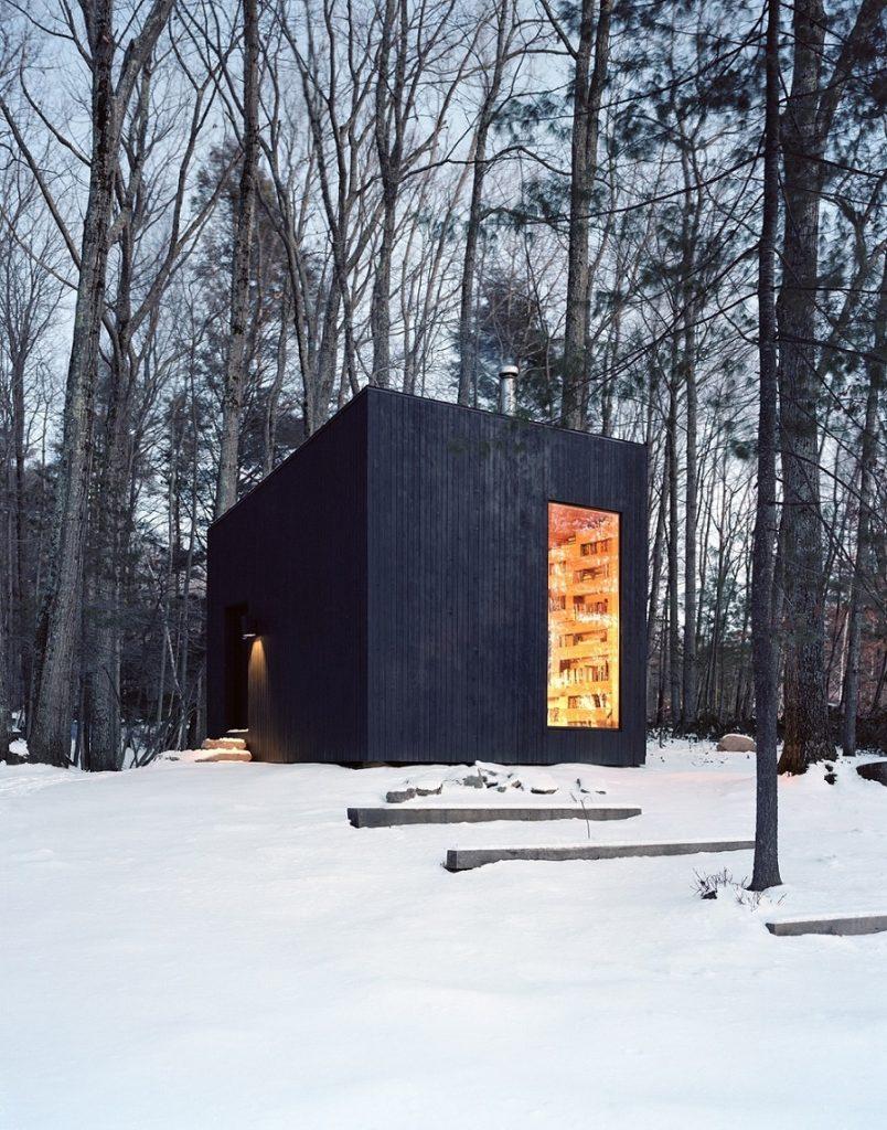 zagonetna-koliba-mala-crna-biblioteka-u-divljini-njujorka-prospekt