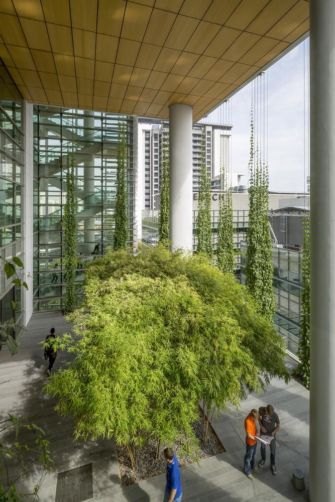 atrijumi-u-arhitekturi-dominantan-element-arhitektonskog-oblikovanja