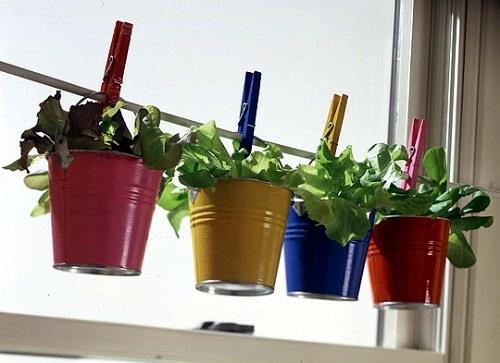 Deset plodonosnih biljaka koje možete gajiti na terasi